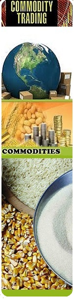 Commodity SL