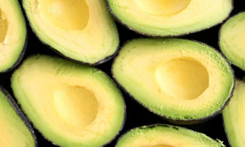Using Artificial Intelligence To Grow Avocados